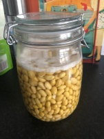 Soaked soya beans
