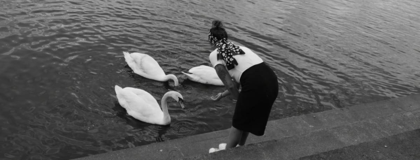 Mindfulness and animals - me feeding some swans